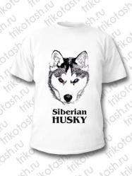 Футболка мужская Siberian Husky
